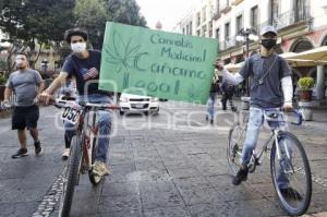 MANIFESTACIÓN GRUPOS CANNÁBICOS