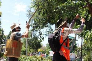 TEHUACÁN . PROYECTO UNAM