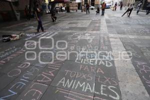 MANIFESTACIÓN MALTRATO ANIMAL